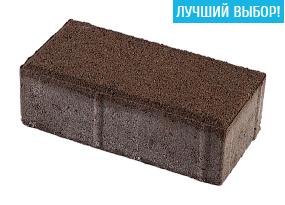 Тротуарная плитка Кирпич 200х100